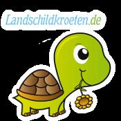 Landschildkröten – Haltung