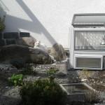 Haltung im Terrarium oder Freigehege?