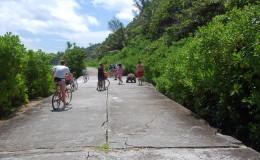 La Digue Seychellen Schildkroeten-003