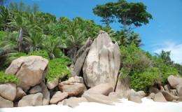 La Digue Seychellen Schildkroeten