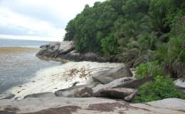 Seychellen-Moyenne-011