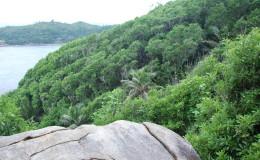 Seychellen-Moyenne-019-Round-Island