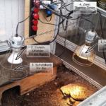 Meine Beleuchtung und Technik im Frühbeet