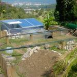 Freigehege, Gehege für Europäische Landschildkröten