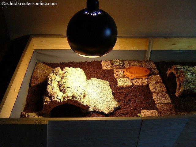 wie man ein terrarium f r landschildkr ten einrichtet. Black Bedroom Furniture Sets. Home Design Ideas