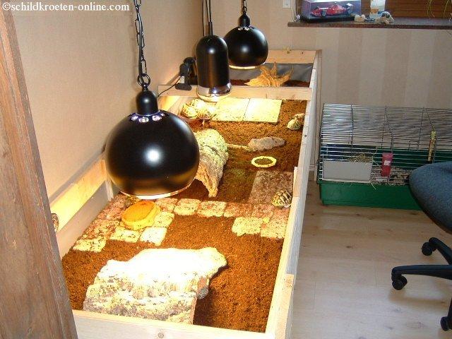 wie man ein terrarium f r schildkr ten einrichtet. Black Bedroom Furniture Sets. Home Design Ideas