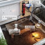 Frühbeet-Befestigung: Aufhängung an Ketten der Lampen und Beleuchtung für Landschildkröten