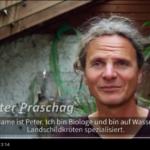 """""""Turtle Hero"""" Peter Praschag benötigt dringend dritten Standort in Graz"""
