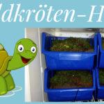 Schildkröten-Betreuung, Schildkröten-Pension/-Hotel